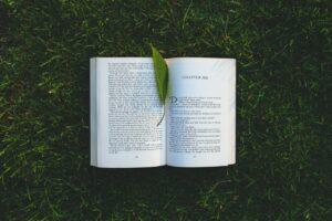 Wie läuft eine Publikation bei einem Verlag ab?