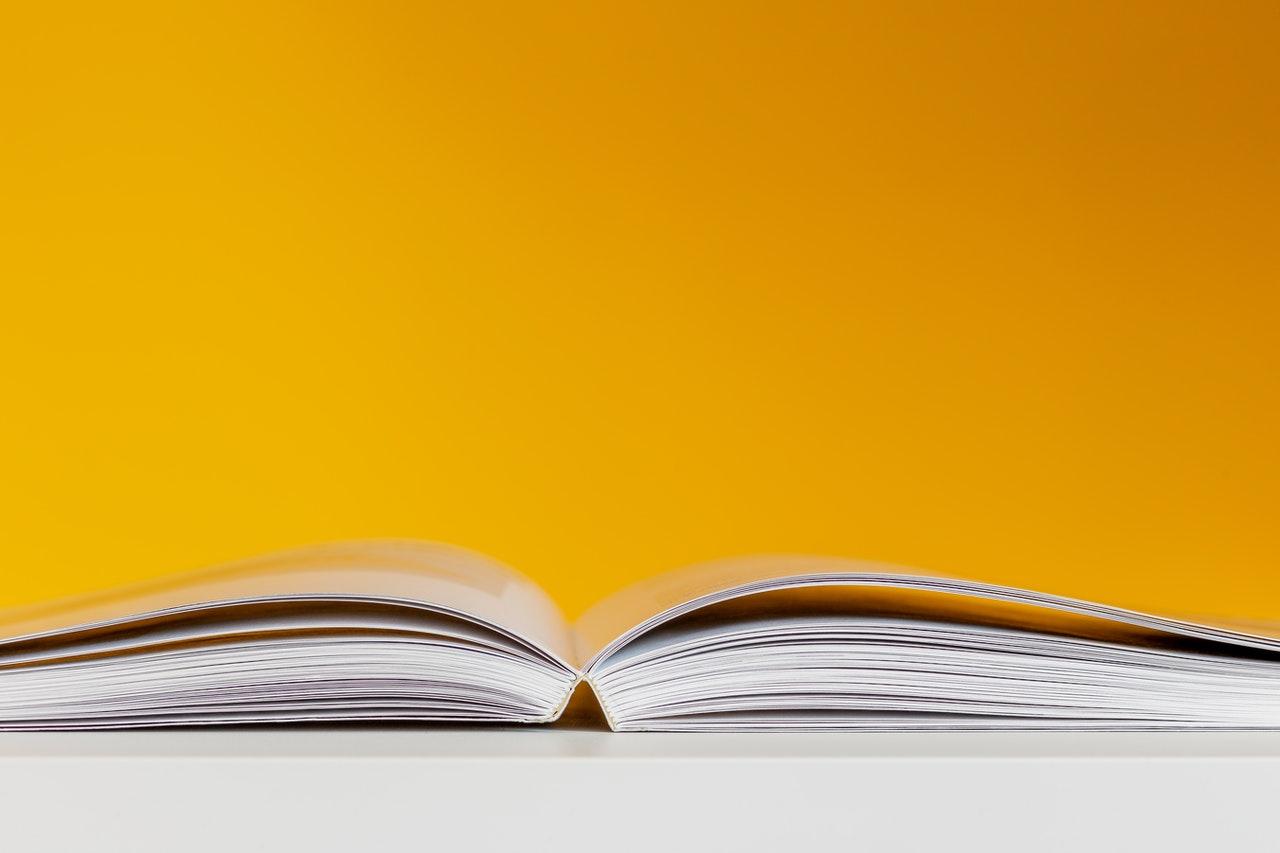 Welche unterschiedlichen Verlagsarten gibt es?